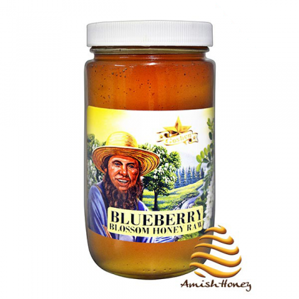 Blueberry Honey Raw
