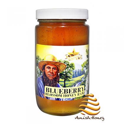 Blueberry Honey Raw
