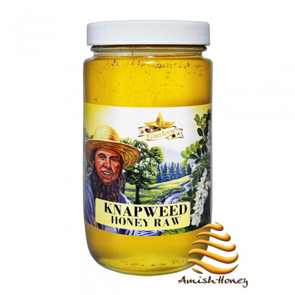 Knapweed Honey Raw