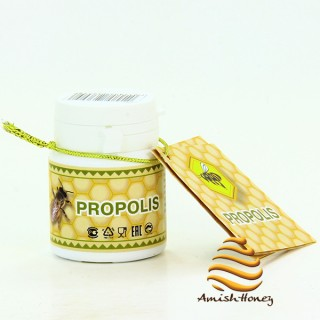 Propolis (15 gr.)