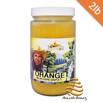 Orange Blossom Honey 2lb
