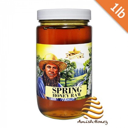 Spring Raw Honey 1lb