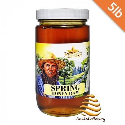 Spring Raw Honey 5lb