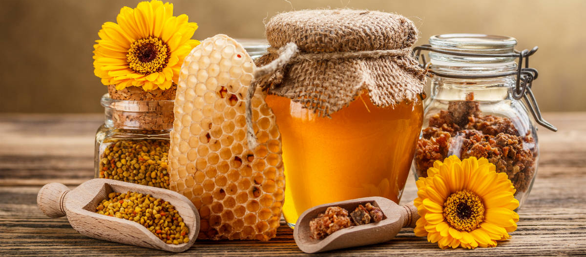 What are the Health Benefits of Honey